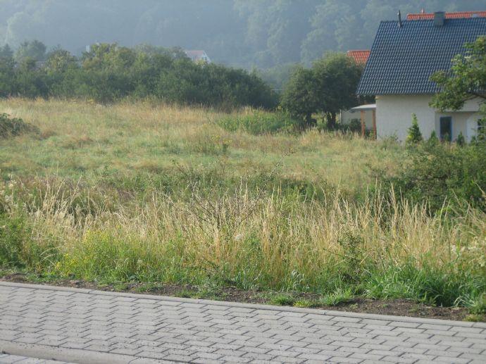 Angebot für Familien: Bis zu 30 % Rabatt auf erschlossenes Baugrundstück im Baugebiet Hohental, Blankenheim