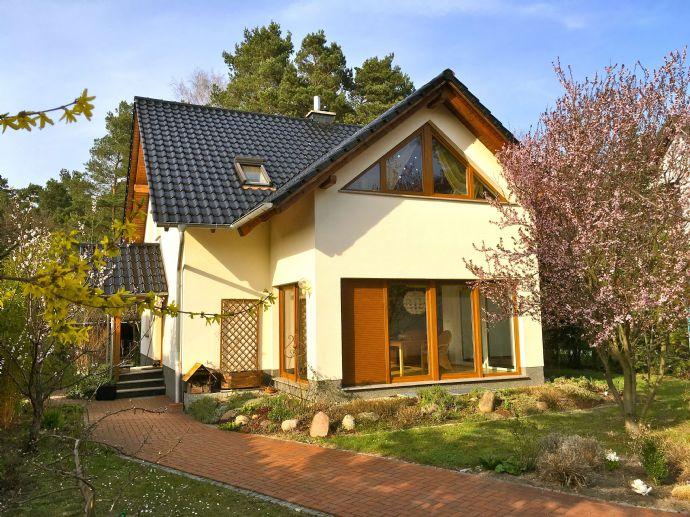 Großes und modernes Haus mit Keller in Waldrandlage in Cottbus-Gallinchen