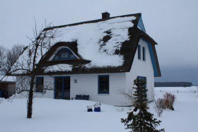 Reet 110 Winter