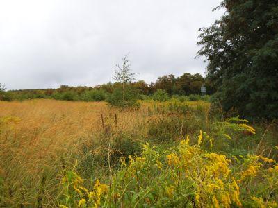 Ansicht vom Grundstück 1