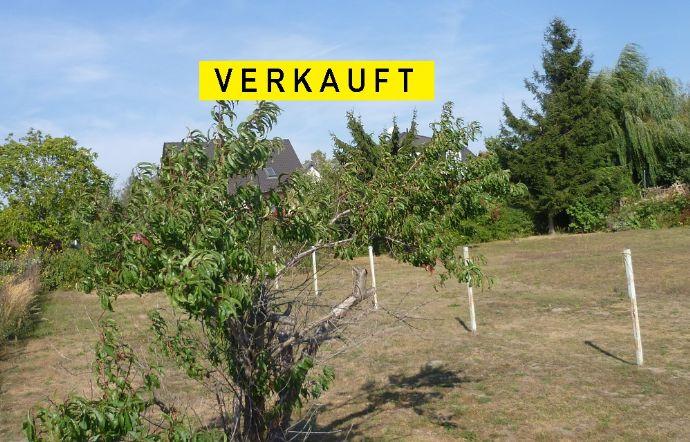 Vollerschlossen * 1254 m² Wohnbaugrundstück mit Abrissgebäude * gepflegte Siedlungslage
