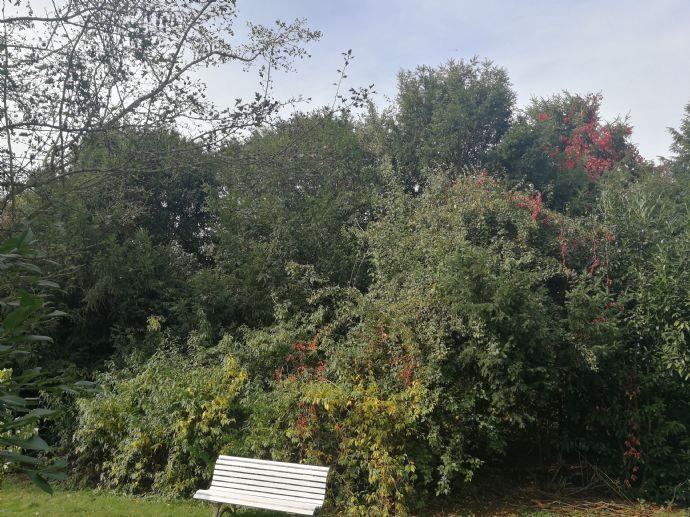 EFH mit Terasse und Garten in Altenstadt