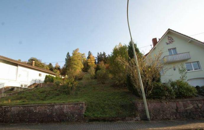 Sonniges Baugrundstück in Mettlach