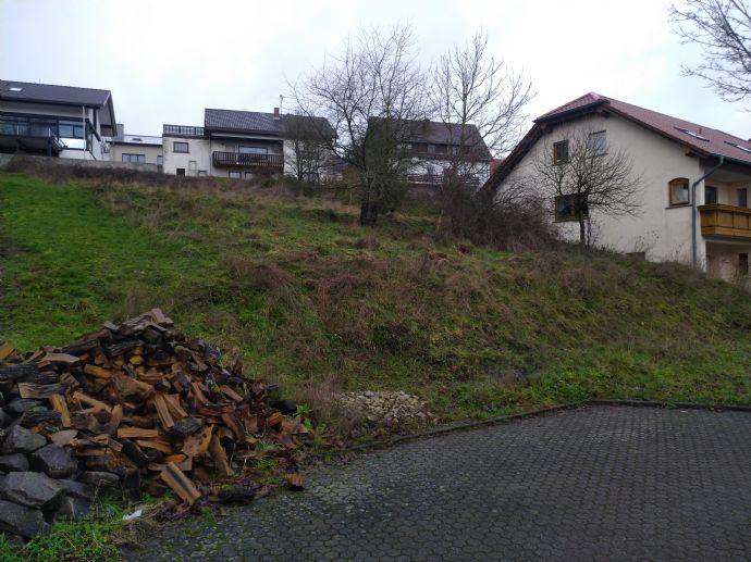 Großes Baugrundstück in Top Lage Marpingen