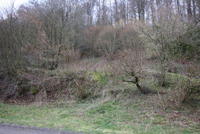 3 zusammenhängende Grundstücke in ruhiger Lage in Winterbach zu verkaufen