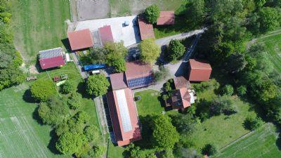 Burgdorf Bauernhöfe, Landwirtschaft, Burgdorf Forstwirtschaft