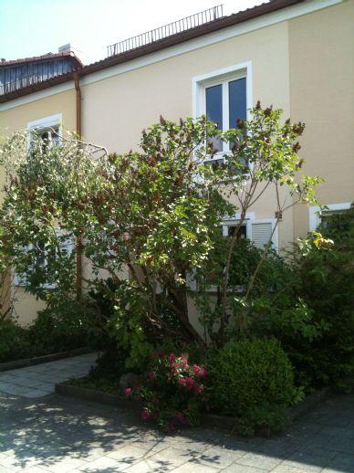 Gemütliches und liebenswertes RMH in München, Freimann-Kieferngarten