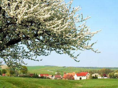 Wunderschöne Südhanglage mit unverbaubarem Blick in Kolmbach !