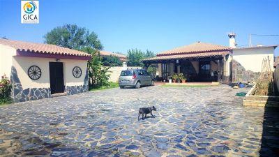 Marquesado Häuser, Marquesado Haus kaufen
