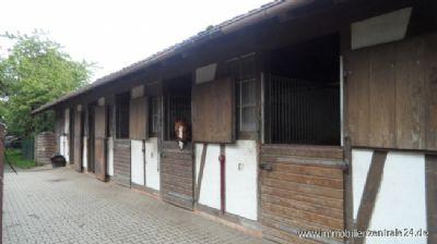 Moderne Außenboxen mit Sattelkammer