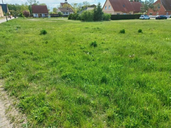 Schönes Baugrundstück in Krugsdorf - Mecklenburg-Vorpommern