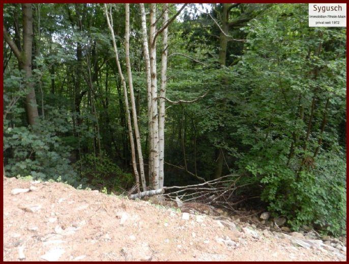 Das Besondere Baugebiet - Grundstück in Traumlage - ruhige Südhanglage