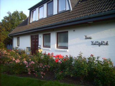 Haus Halligblick - Ferienwohnung 8 Pellworm