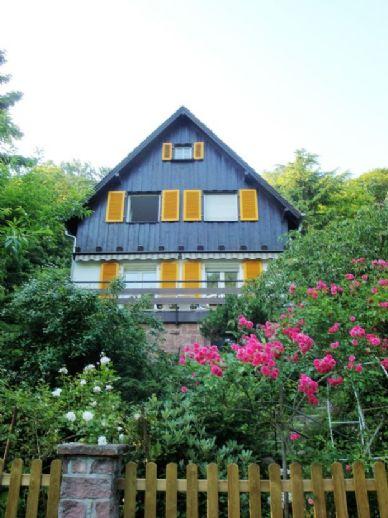 Einfamilienhaus mit großem Garten in ruhiger, grüner Lage (Mühltal, Heidelberg Handschuhsheim) zu vermieten