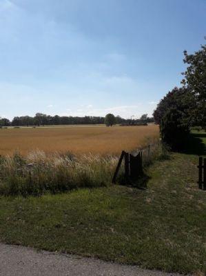 Seehausen Bauernhöfe, Landwirtschaft, Seehausen Forstwirtschaft