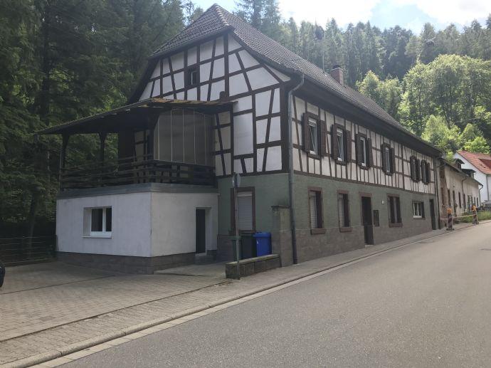 2 Zimmer Wohnung in Elmstein