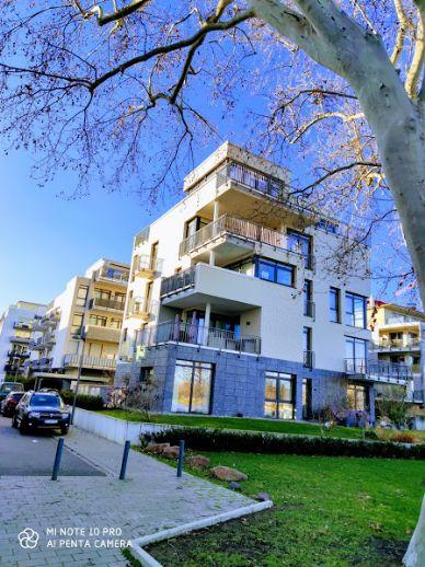 Terrassen Wohnung in erster Reihe inklusive Rheinblick.