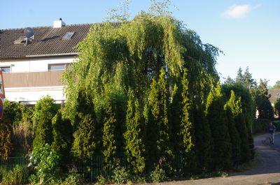 Bad Schwartau Häuser, Bad Schwartau Haus mieten