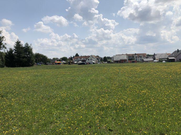 Haus und Grundstück bei Dresden!