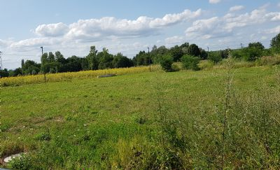 Bad Krozingen Grundstücke, Bad Krozingen Grundstück kaufen
