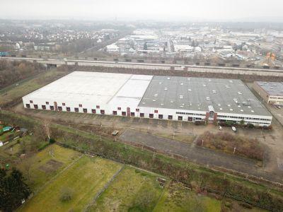 Hildesheim Halle, Hildesheim Hallenfläche