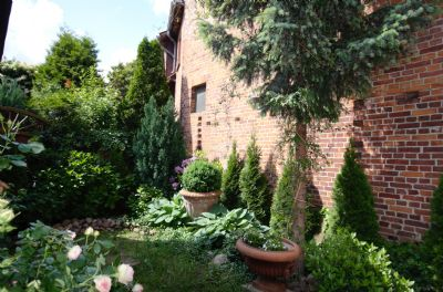 Blick in den Garten Juni 16