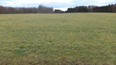 V E R K A U F T *** Landwirtschaftliches Grundstück mit Bergblick und guter Nutzbarkeit