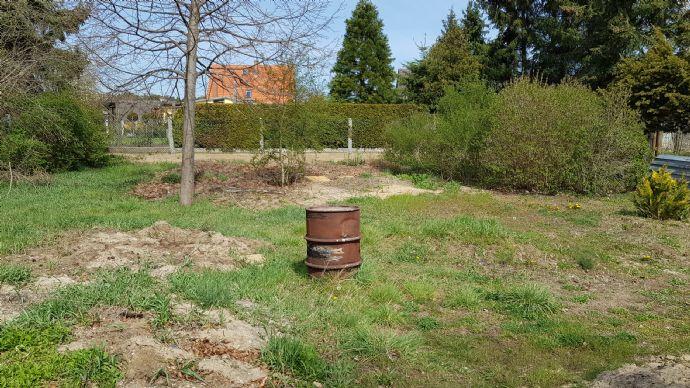 provisionsfreies Baugrundstück in der Rosenstadt Forst (Lausitz)