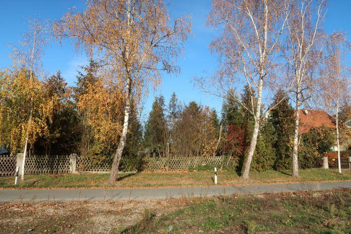 Unbeb. Grundstück in Fürth, Gemarkung Dambach, ca 3250 qm von privat für Kapitalanleger