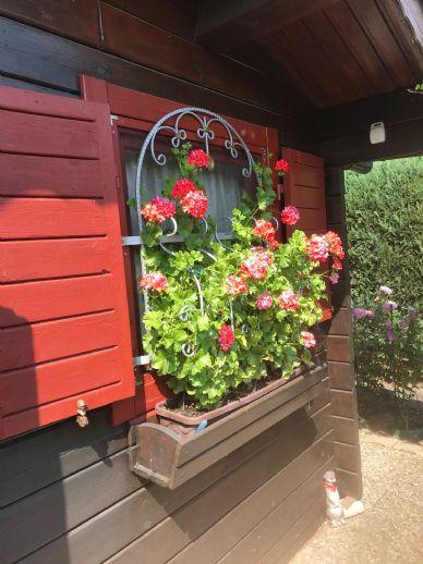 - V E R K A U F T - Kleines Gartenparadies zu verkaufen