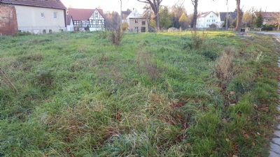 unbebautes Grundstück Loitsch