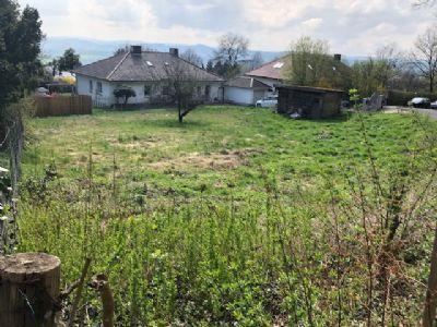 Niedenstein Grundstücke, Niedenstein Grundstück kaufen
