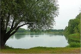 Stadthaus auf ruhigem, grünen Grundstück in gefragter Lage von Mahlsdorf