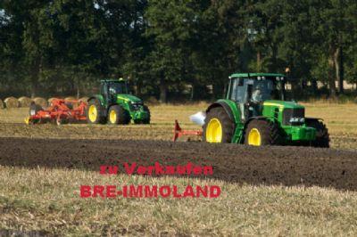 Barßel Bauernhöfe, Landwirtschaft, Barßel Forstwirtschaft