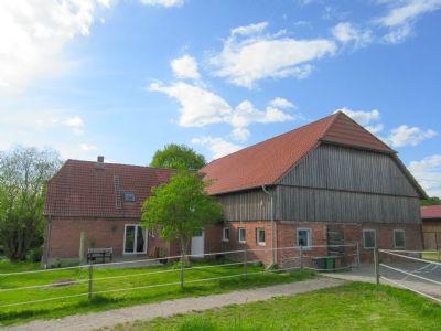Kirchnüchel Bauernhöfe, Landwirtschaft, Kirchnüchel Forstwirtschaft