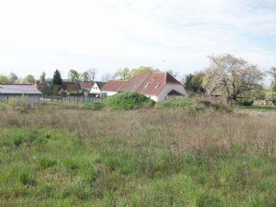 15518 Schönfelde (Lkr. LOS): Geteiltes Baugrundstück in dörflicher Umgebung, prov.
