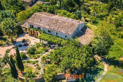 Selva Häuser, Selva Haus kaufen