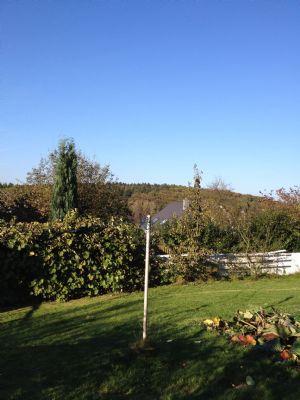 Sommer im eigenen Garten