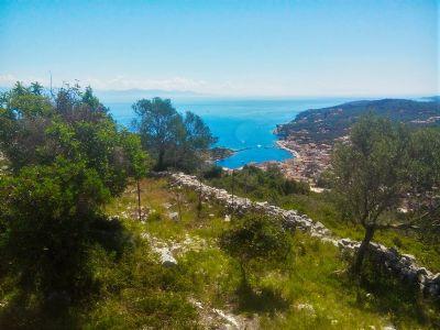 Ionische Inseln Bauernhöfe, Landwirtschaft, Ionische Inseln Forstwirtschaft