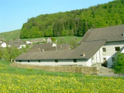 Ühlingen-Birkendorf Bauernhöfe, Landwirtschaft, Ühlingen-Birkendorf Forstwirtschaft