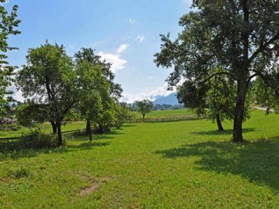 Hohenthurn Grundstücke, Hohenthurn Grundstück kaufen