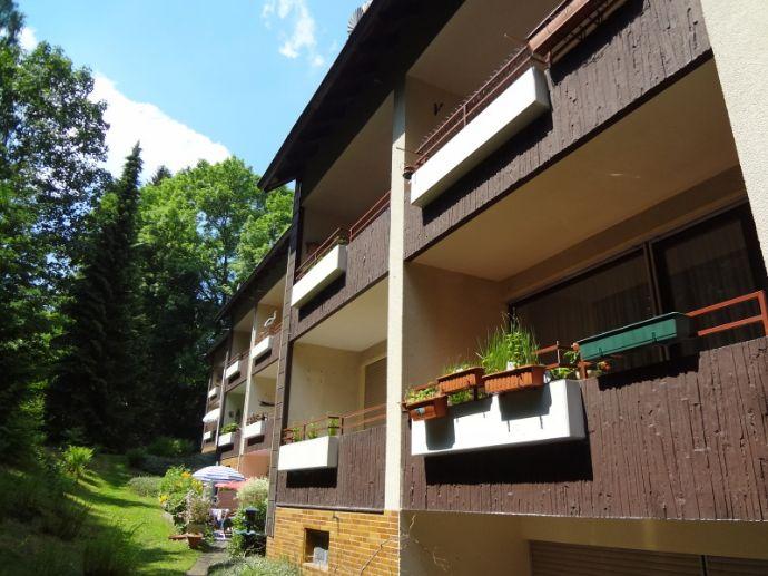 Modernes Apartment mit Südbalkon unweit des Schmelzteiches