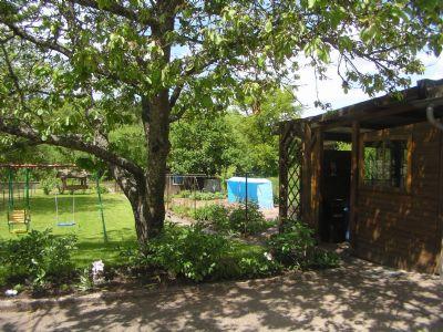 Blick in den Garten und Gartenhaus