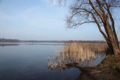 der Seddinsee im Winter