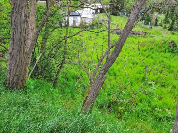 bauträgerfreies Baugrundstück - Witrow-Siedlung