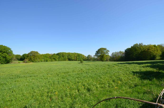 Grundstück in Feldrandlage