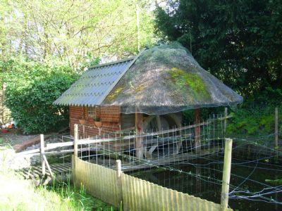 Wassermühle mit Naturteich