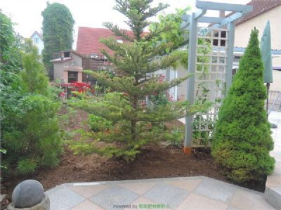 Terrasse mit Garten Wohnung 1.