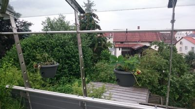 Ausblick Dachterrasse 3
