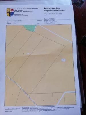 Fünfseen / Rogeez Bauernhöfe, Landwirtschaft, Fünfseen / Rogeez Forstwirtschaft